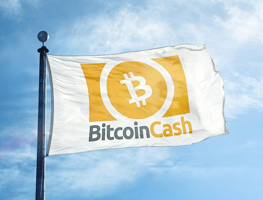 Bitcoin Cash Community Divided Ahead of Upcoming Hard Fork