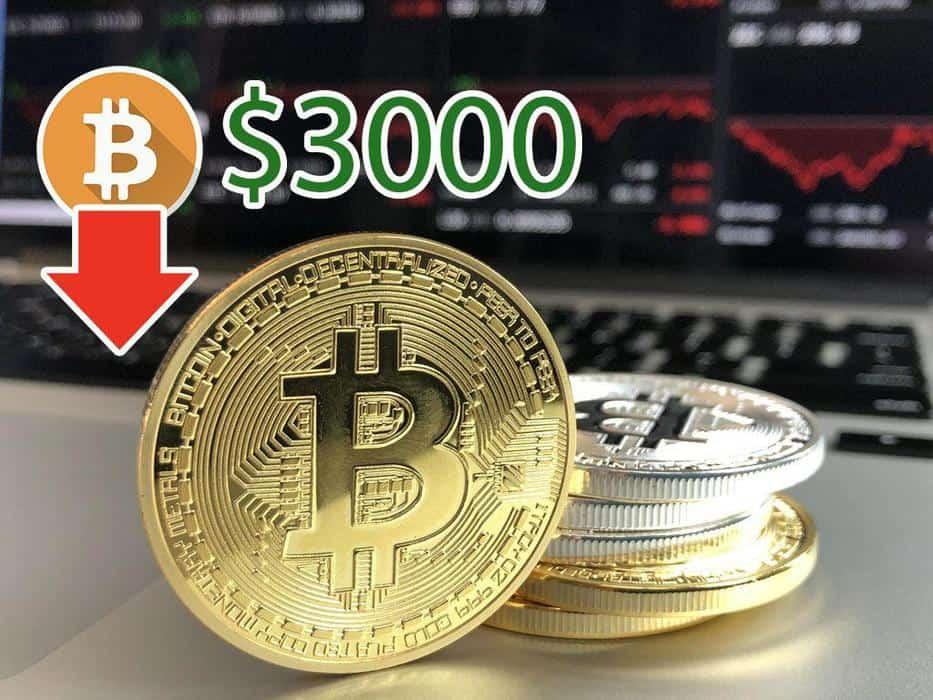 pro trader bitcoin)