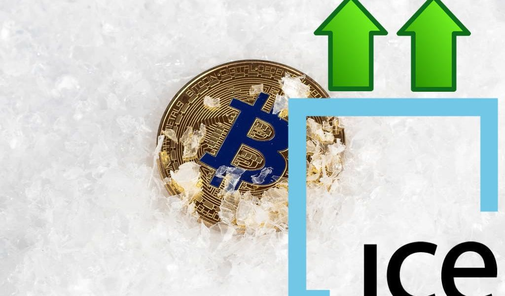 ICE took advantage of the crypto winter to buy cryptocurrency at a discount